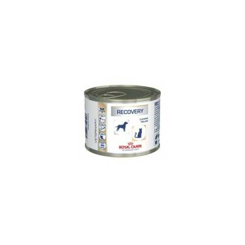 RECOVERY VETERINARY 195G