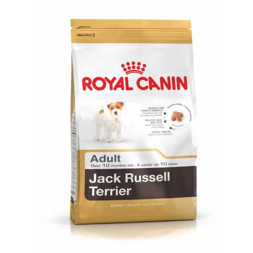 JACK RUSSELL ADULTO 7.5 KG ROYAL CANIN