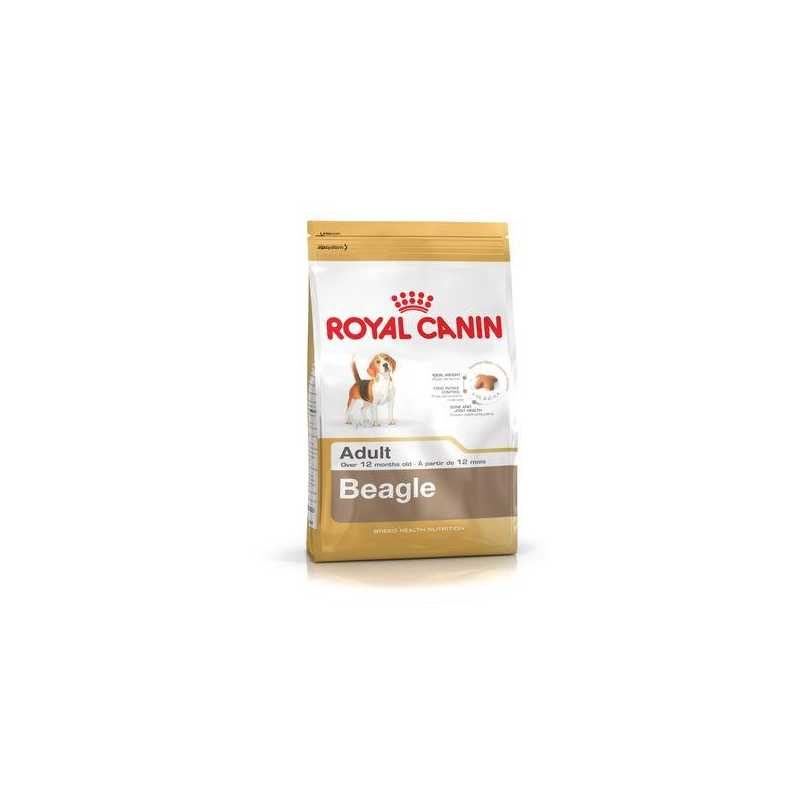Beagle Adulto Royal Canin 3Kg