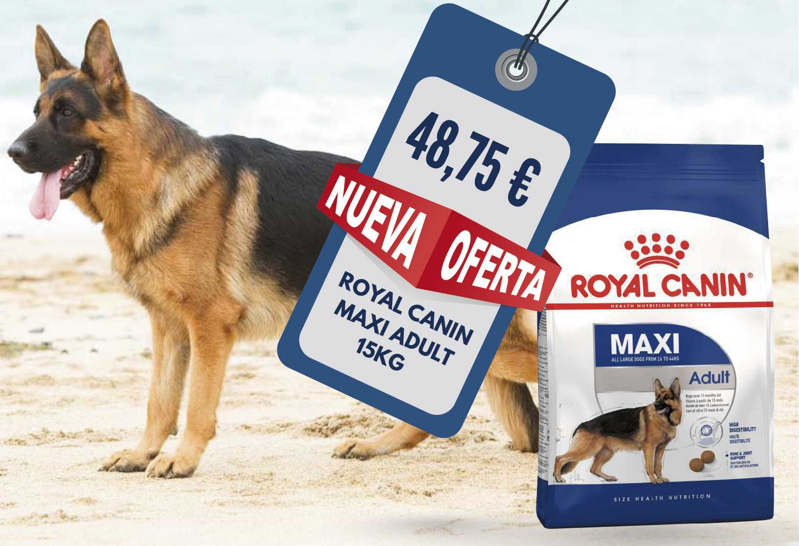 ROYAL CANIN MAXI ADULTO 15 KG