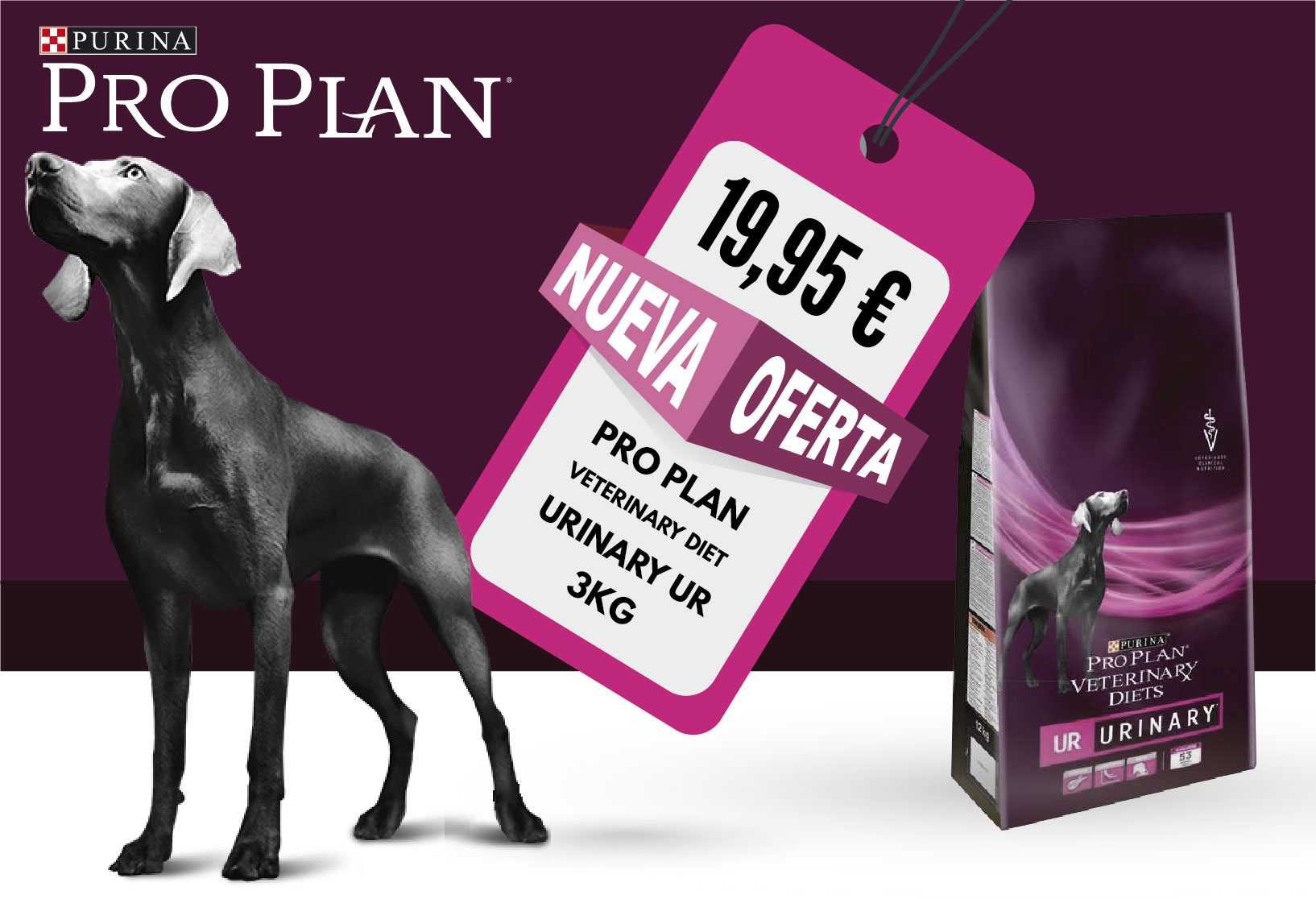 PRO PLAN VETERINARY DIET URINARY UR