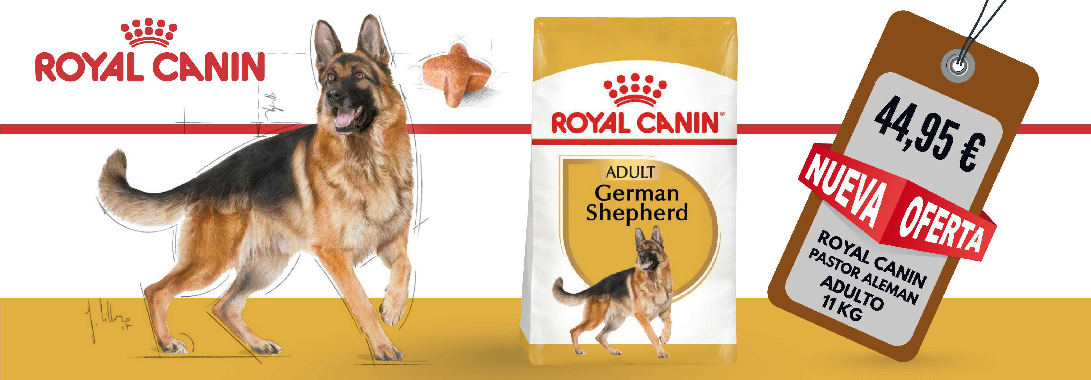 ROYAL CANIN PASTOR ALEMAN ADULT 11 KG