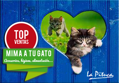 Top ventas Gatos